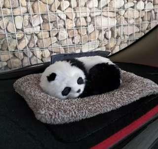 活性碳車內擺設(小熊貓,狐狸)