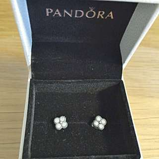 Price Reduced Brand New In Box Pandrora Earring