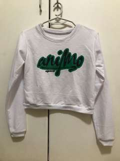 Animo Cropped Sweater