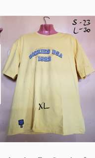 Dickies oversize/loosefit shirt