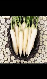 White carrot seeds