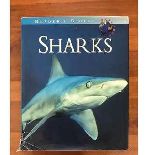 Reader's Digest Explores Sharks