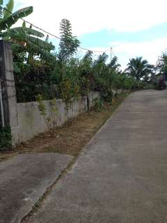 Lot for sale Alfonso near Tagaytay
