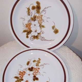 "Stoneware flat plates,10.75"""