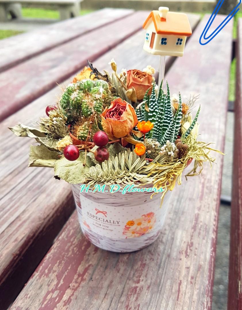 乾燥花 花束 花禮 仙人掌 多肉植物 花盆