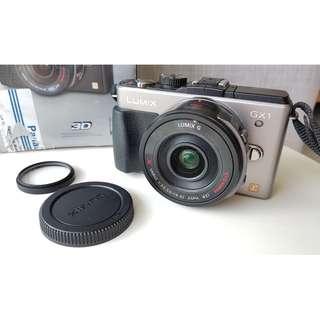 Panasonic Lumix GX1 Mirrorless Digital Camera