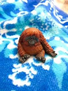 🚚 休眠動物 扭蛋 轉蛋 紅毛猩猩