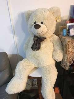 Big life size Teddy Bear
