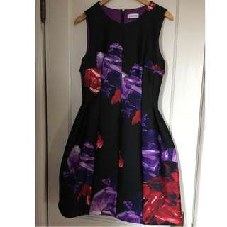 Calvin Klein Dress (Size 10)