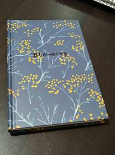 Notebook / Journal / Diary / Sketchbook (hardcover, plain)