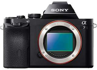 Sony Alpha A7 + 50mm F1.8 Kredit Low Dp