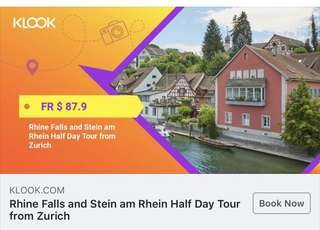 Rhine Falls and Stein am Rhein Half Day Tour from Zurich