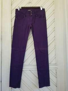Italy Calliope Basic Pants - Purple