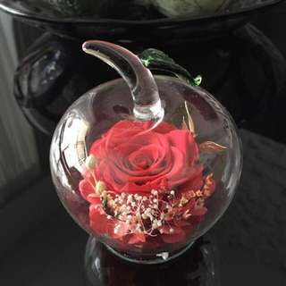 Premium Preserved Roses in Apple Shaped Glass