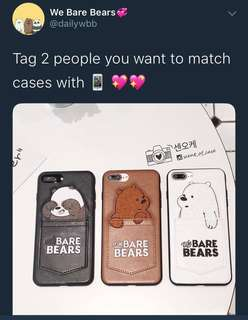 We bare bears case