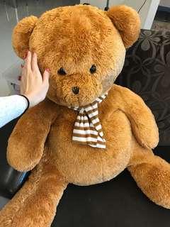 Huge life size teddy