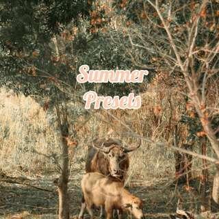 Summer Presets (Bali inspired)