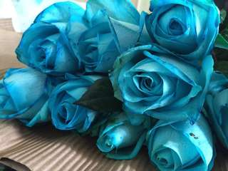 Anniversary bouquet/Blue rose bouquet/Rose bouquet/birthday bouquet