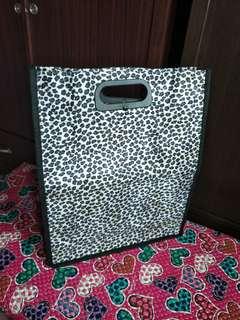 Office/folder bag