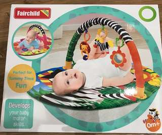 Baby Gym and Playmat