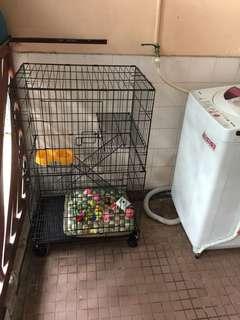 Cage / Sangkar kucing 2 tingkat + mangkuk makan + mainan