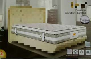 Spring Bed Plush Top 160x200cm / Mattress / Kasur