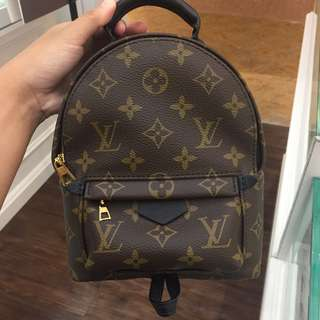 Louis Vuitton Mini Palm Spring Backpack