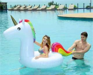 Giant Unicorn Floater