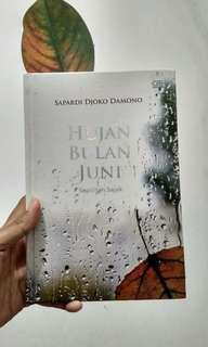hujan bulan juni sapardi djoko damono