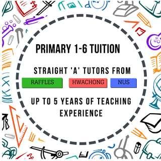 Primary School Private 1-1 Home Tuition