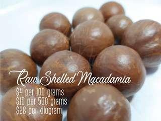 Raw Shelled Macadamia