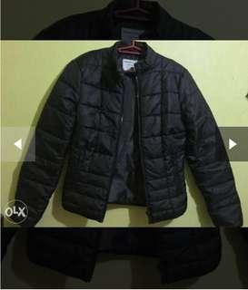 Terranova Winter Jacket(Windbreaker)