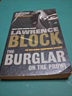 Burglar on the Prowl