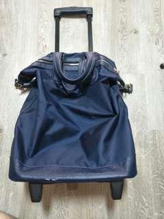 Lagguge bag or grocery bag