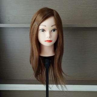 Hair Mannequin 100% Human Hair Manekin Rambut Patung Rambut Sanggul