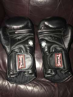 Twins boxing gloves special