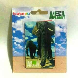 🚚 動物星球非洲象icash2.0 王者之風5-2