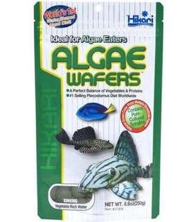 Hikari Sinking Algae Wafers 250g