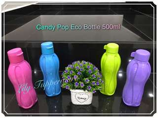 Tupperware Candy Pop Eco Bottle (1pc) 500ml