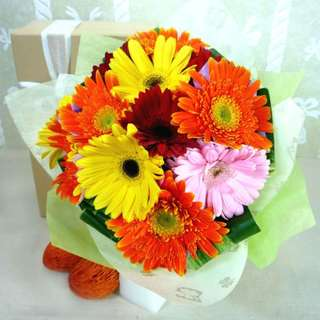 [FREE DELIVERY] 12 Mixed Gerberas Hand-bouquet (015-GB)