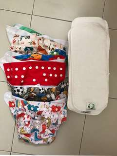 Cloth Diaper and Insert