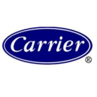 CARRIER WINDOW TYPE
