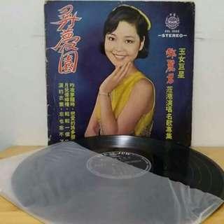 鄧麗君黑膠唱片。尋夢園。有花。背面歌詞