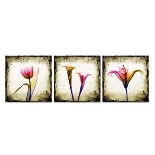 Flower Light Background Acrylic Print  3 Piece
