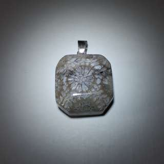 Fossil Coral Pendant. Nice coral pattern and size.