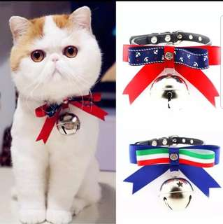 Pet Collar necklace