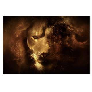 Lion Art Acrylic Print 1 Piece