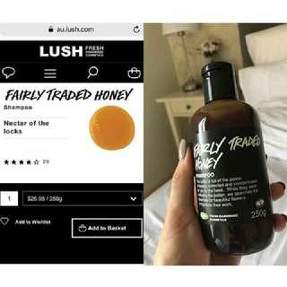 NEW Lush Fairly Shampoo
