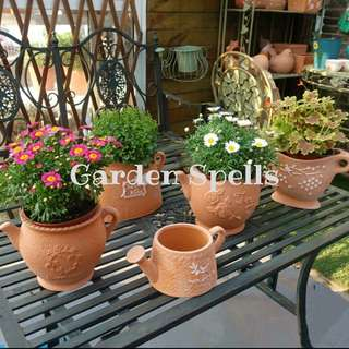 Set of 5 Terracotta Pots
