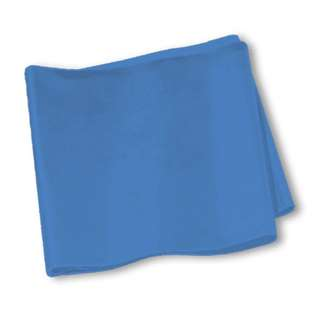Brand New SPRI® Flat Band - 5-Foot- Blue - Heavy